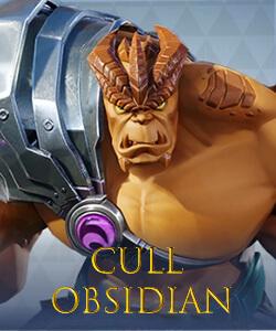 Cull Obsidian MSW